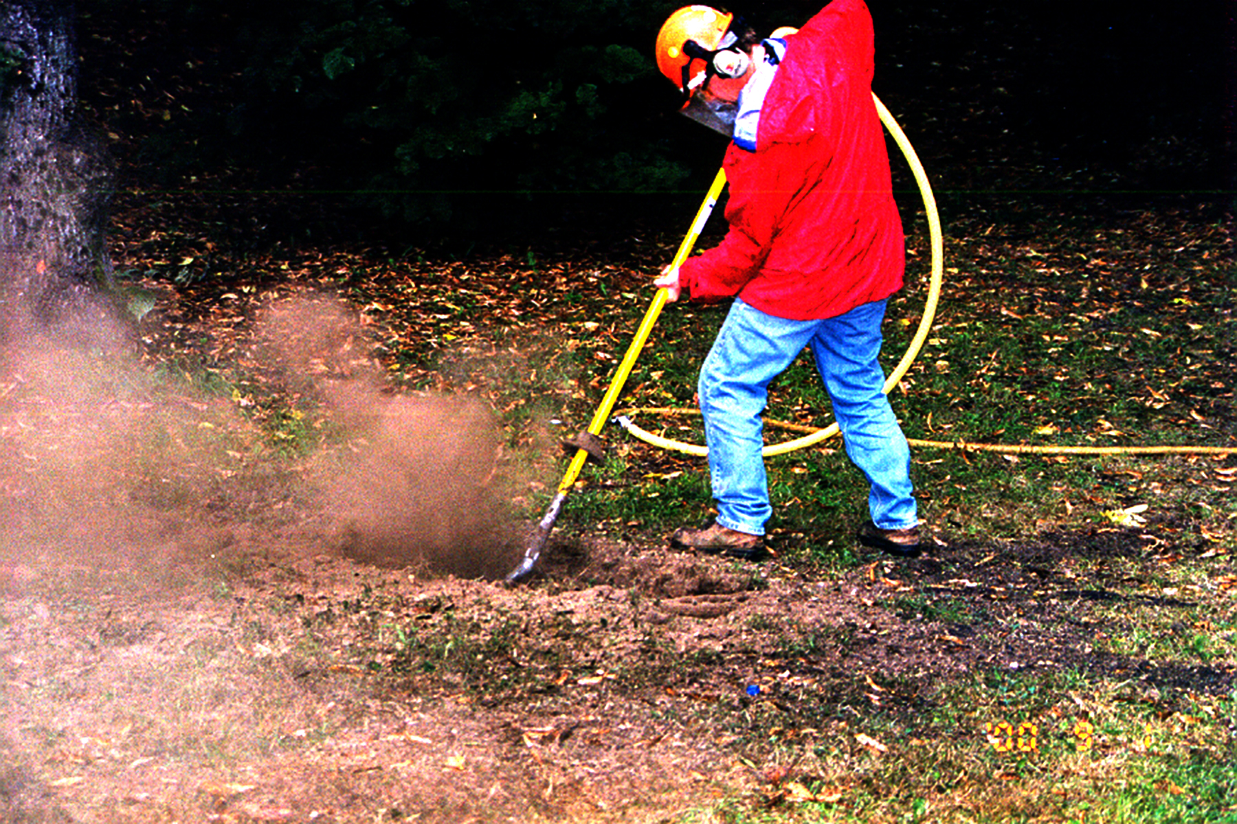 Homeowner Concerns for Tree Care - Dunster and Associates